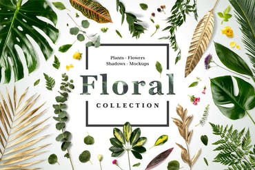Floral Mockups Collection