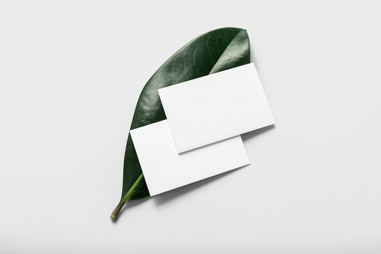 Free Business Card Mockup Vol. 6